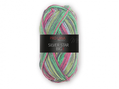 Silver Star Big (Pro Lana) Nelkenstrauß