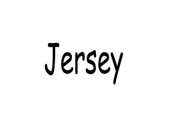 Jersey Stoff