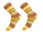 Sockenwolle SUPERSOCKE 100 MERINO EXTRAFEIN COLOR 2549